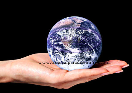 earthinhand(tropicalparadisemm2h)